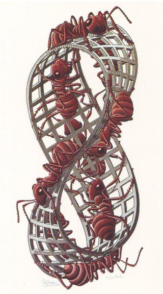 escher-ants